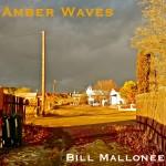 bill mallonee amber waves.jpg