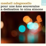meshell ndegeocello pour une ame.jpg
