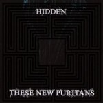 these_New_Puritans_-_Hidden.jpg
