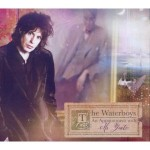 waterboys an appointment.jpg