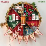 tracey thorn tinsel and lights.jpg