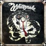 whitesnake box.jpg
