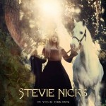 stevie nicks in your dreams.jpg