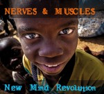 nerves and muscles new mind revolution.jpg