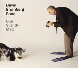 david bromberg only slightly mad