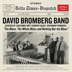 david bromberg band the blues, the whole blus and nothing but the blues