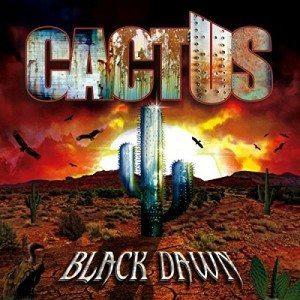cactus black dawn