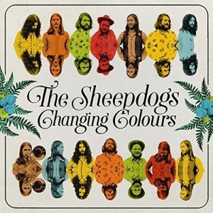 sheepdogs changing colours