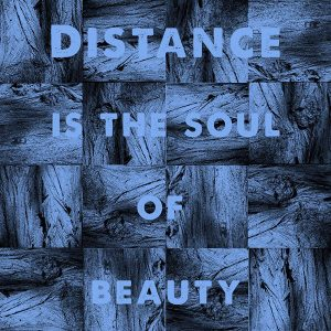 michael sheehy distance is the soul of beauty