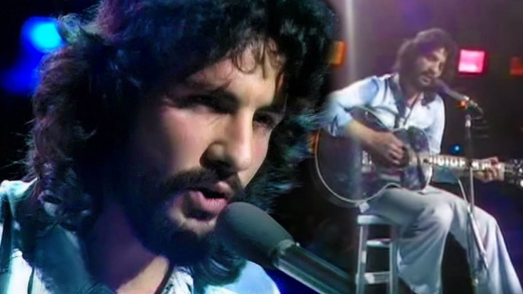 cat-stevens-wild-world-live-735x413